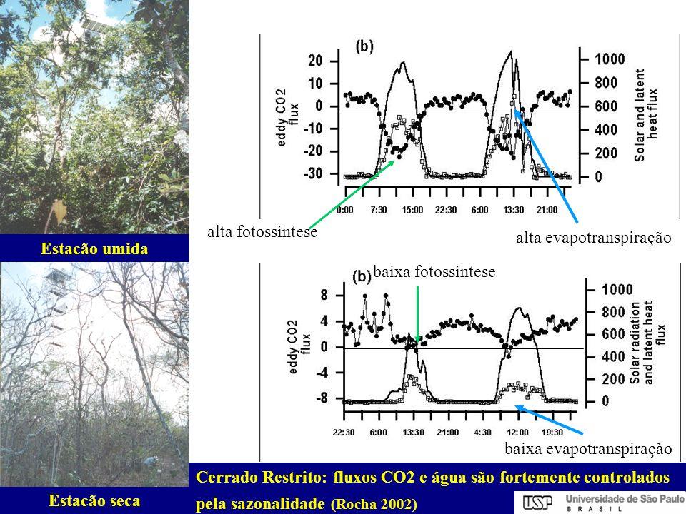 Cerrado Restrito:fluxos CO2 e água são fortemente controlados pela sazonalidade (Rocha 2002) Estacão umida Estacão seca alta fotossíntese alta evapotr