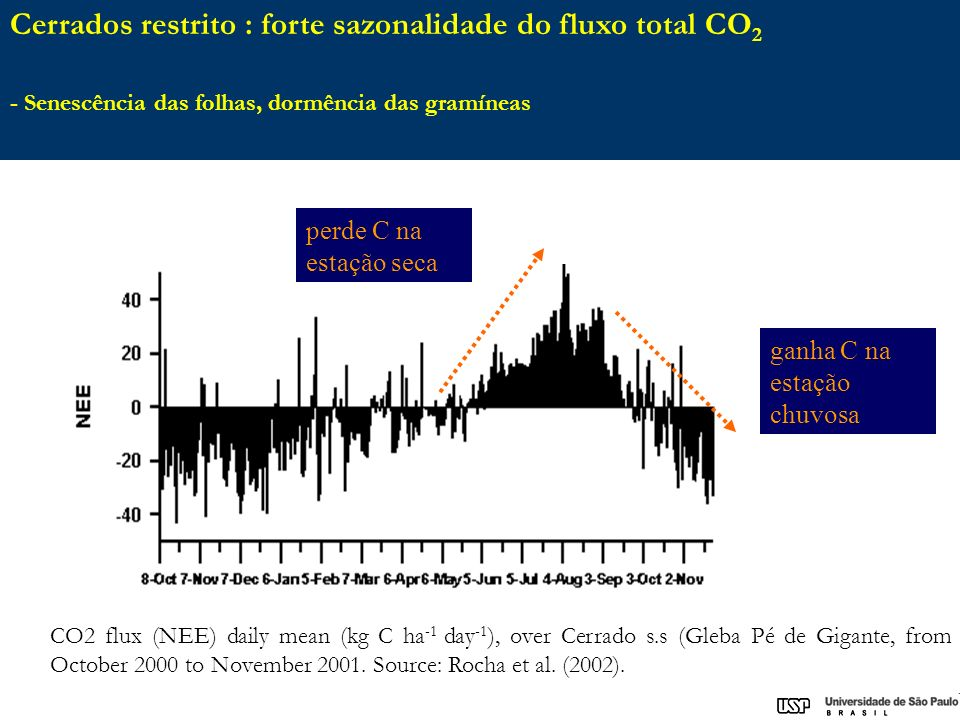 CO2 flux (NEE) daily mean (kg C ha -1 day -1 ), over Cerrado s.s (Gleba Pé de Gigante, from October 2000 to November 2001.