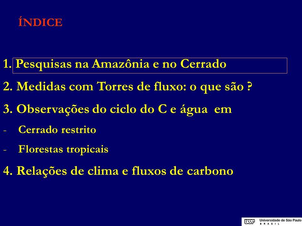 Experimento L B A Experimento de Interação Biosfera-Atmosfera de Grande Escala na Amazônia Coordenação: Instituto Nacional de Pesquisas Espaciais (INPE) 232 instituições50 brasileiras 182 estrangeiras (EUA, UE) 973 pesquisadores380 brasileiros 593 estrangeiros
