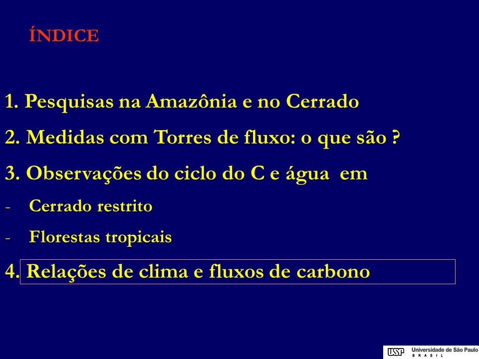 ÍNDICE 1. Pesquisas na Amazônia e no Cerrado 2. Medidas com Torres de fluxo: o que são ? 3. Observações do ciclo do C e água em -Cerrado restrito -Flo