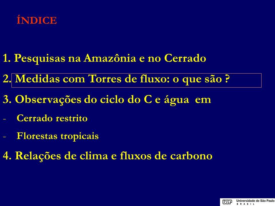 Objetivo das Torres de Fluxo - medir Fluxos superfície-atmosfera de CO2, água e calor - onde o fluxo F esteja distribuido sobre uma superfície transportado pelo vento - com medições na altura h