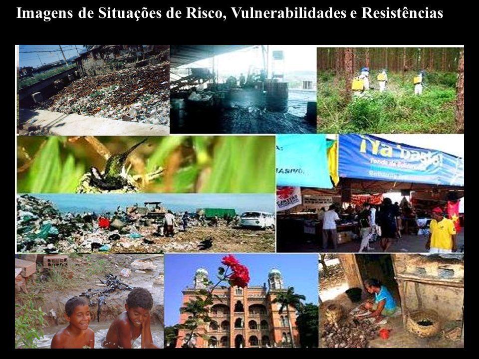 Exemplos de Riscos às Populações Riscos Clássicos e reemergência: Malária, Aids, Dengue, Tuberculose, Gripe Aviária.
