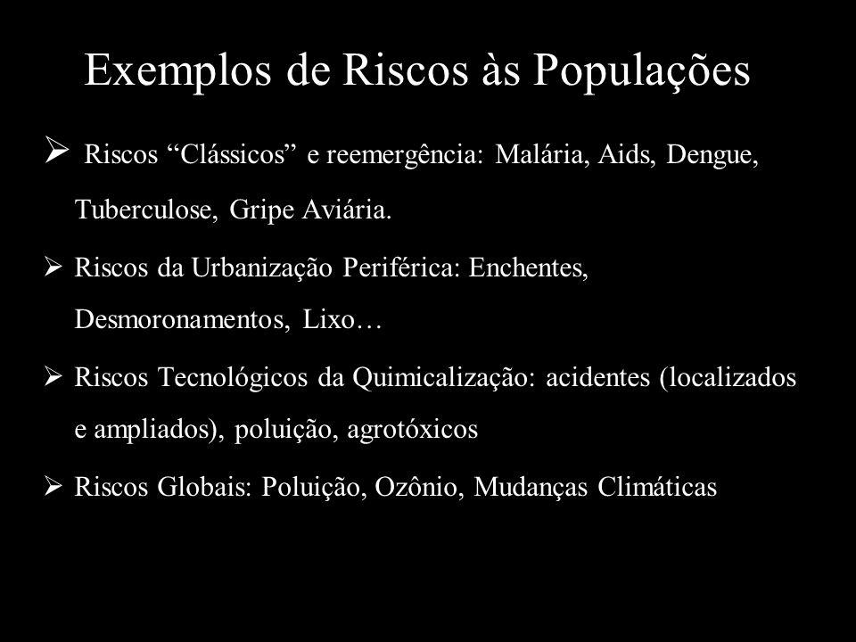 Exemplos de Riscos às Populações Riscos Clássicos e reemergência: Malária, Aids, Dengue, Tuberculose, Gripe Aviária. Riscos da Urbanização Periférica: