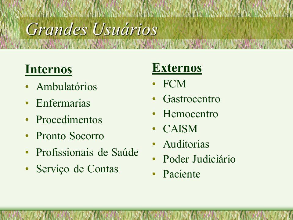 Grandes Usuários Internos Ambulatórios Enfermarias Procedimentos Pronto Socorro Profissionais de Saúde Serviço de Contas Externos FCM Gastrocentro Hem