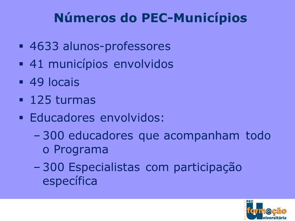Números do PEC-Municípios 4633 alunos-professores 41 municípios envolvidos 49 locais 125 turmas Educadores envolvidos: –300 educadores que acompanham