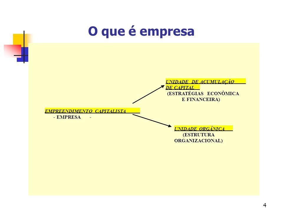4 O que é empresa UNIDADE DE ACUMULAÇÃO DE CAPITAL (ESTRATÉGIAS ECONÔMICA E FINANCEIRA) EMPREENDIMENTO CAPITALISTA - EMPRESA- UNIDADE ORGÂNICA (ESTRUTURA ORGANIZACIONAL)