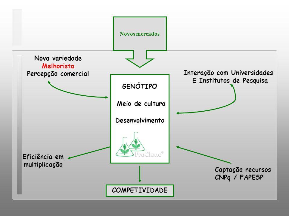 GENÓTIPO Meio de cultura Desenvolvimento Nova variedade Melhorista Percepção comercial Interação com Universidades E Institutos de Pesquisa COMPETIVID