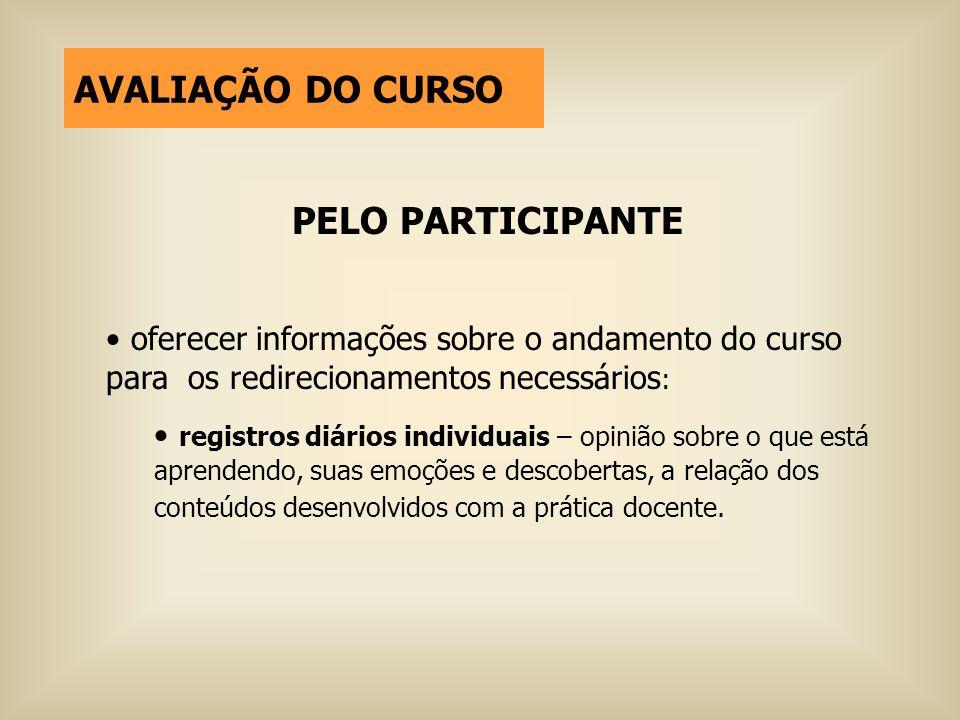 PELO PARTICIPANTE oferecer informações sobre o andamento do curso para os redirecionamentos necessários : registros diários individuais – opinião sobr