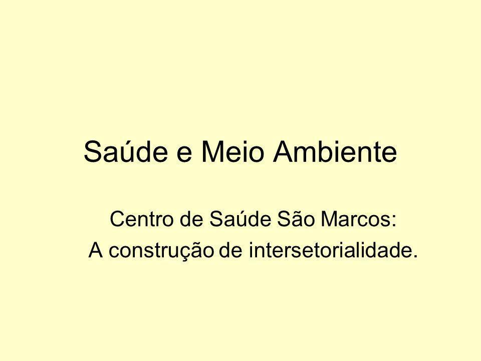 Saúde e Meio Ambiente Centro de Saúde São Marcos: A construção de intersetorialidade.