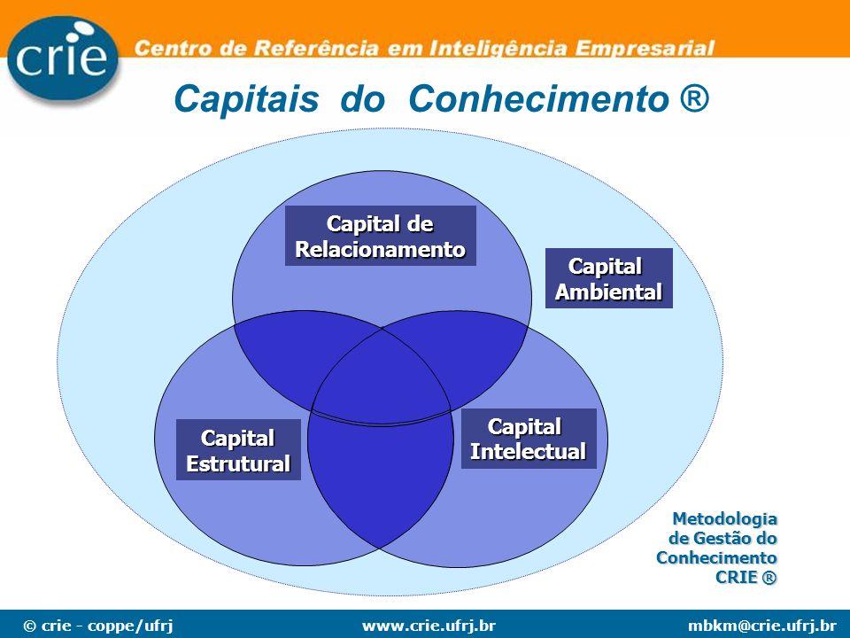 © crie - coppe/ufrjmbkm@crie.ufrj.brwww.crie.ufrj.br Capital Ambiental Capital Intelectual Capital de Capital de Relacionamento Capital Estrutural Met