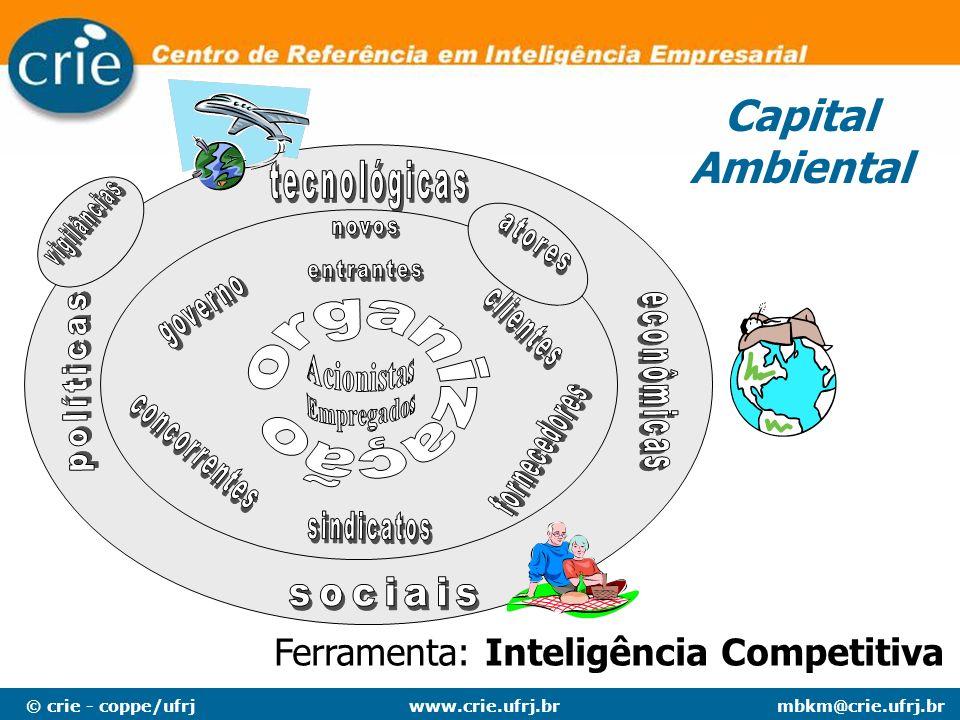 © crie - coppe/ufrjmbkm@crie.ufrj.brwww.crie.ufrj.br Capital Ambiental Ferramenta: Inteligência Competitiva