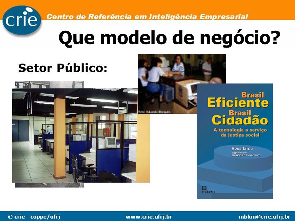 © crie - coppe/ufrjmbkm@crie.ufrj.brwww.crie.ufrj.br Setor Público: Que modelo de negócio?