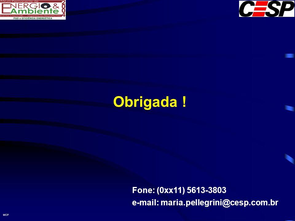 MCP Obrigada ! Fone: (0xx11) 5613-3803 e-mail: maria.pellegrini@cesp.com.br