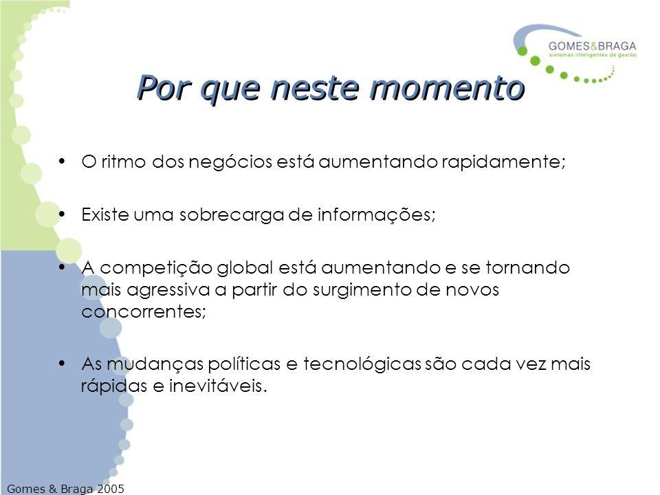 Gomes & Braga 2005 Por que neste momento O ritmo dos negócios está aumentando rapidamente; Existe uma sobrecarga de informações; A competição global e
