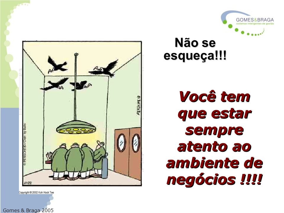Gomes & Braga 2005 Você tem que estar sempre atento ao ambiente de negócios !!!! Não se esqueça!!!
