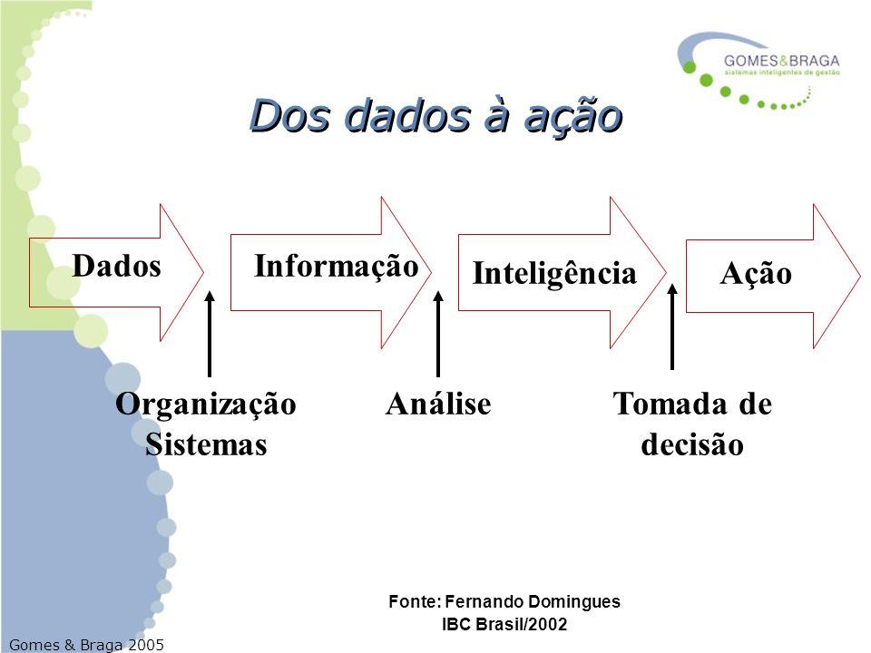 Gomes & Braga 2005 DadosInformação InteligênciaAção Organização Sistemas AnáliseTomada de decisão Dos dados à ação Fonte: Fernando Domingues IBC Brasi