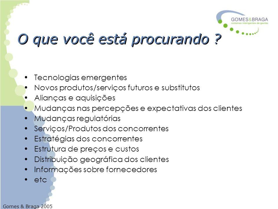 Gomes & Braga 2005 O que você está procurando ? Tecnologias emergentes Novos produtos/serviços futuros e substitutos Alianças e aquisições Mudanças na