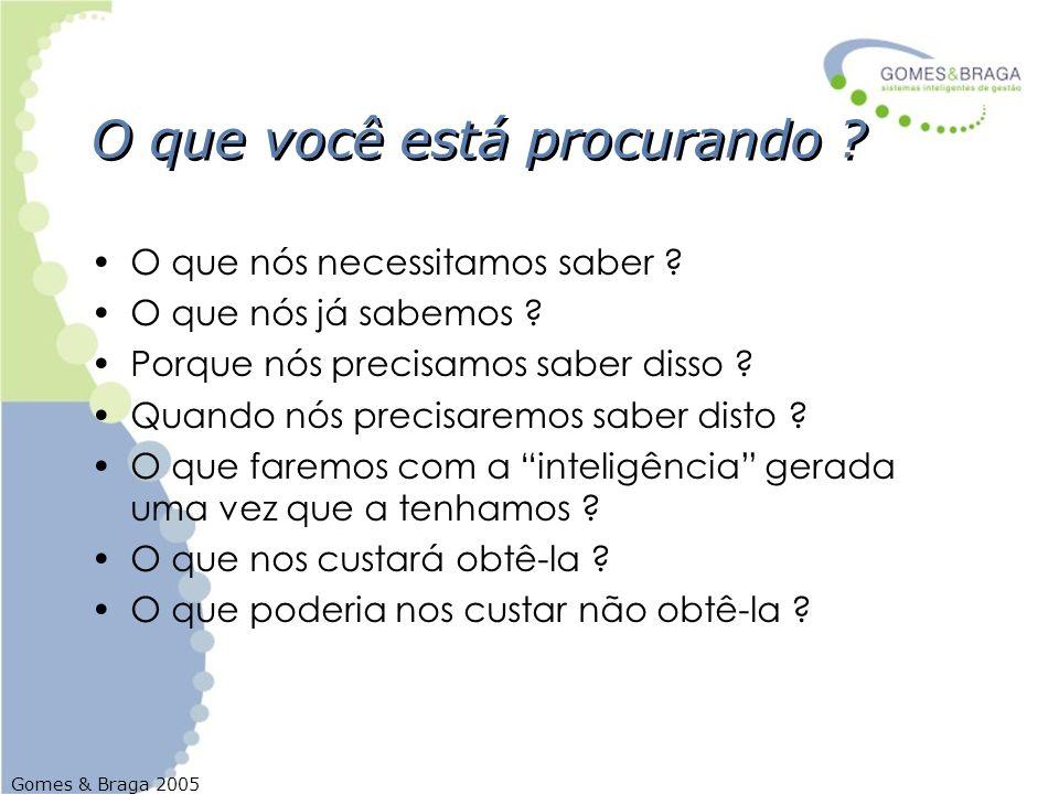 Gomes & Braga 2005 O que você está procurando ? O que nós necessitamos saber ? O que nós já sabemos ? Porque nós precisamos saber disso ? Quando nós p