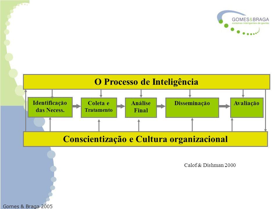 Gomes & Braga 2005 Análise Final DisseminaçãoAvaliação Identificação das Necess. Coleta e Tratamento O Processo de Inteligência Conscientização e Cult