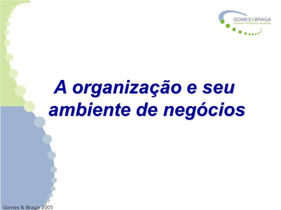 Gomes & Braga 2005 As organizações O conhecimento sobre o ambiente é fundamental para o processo estratégico, no sentido de se obter a adequada compatibilidade entre a organização e as forças externas e internas que afetam seus propósitos e objetivos