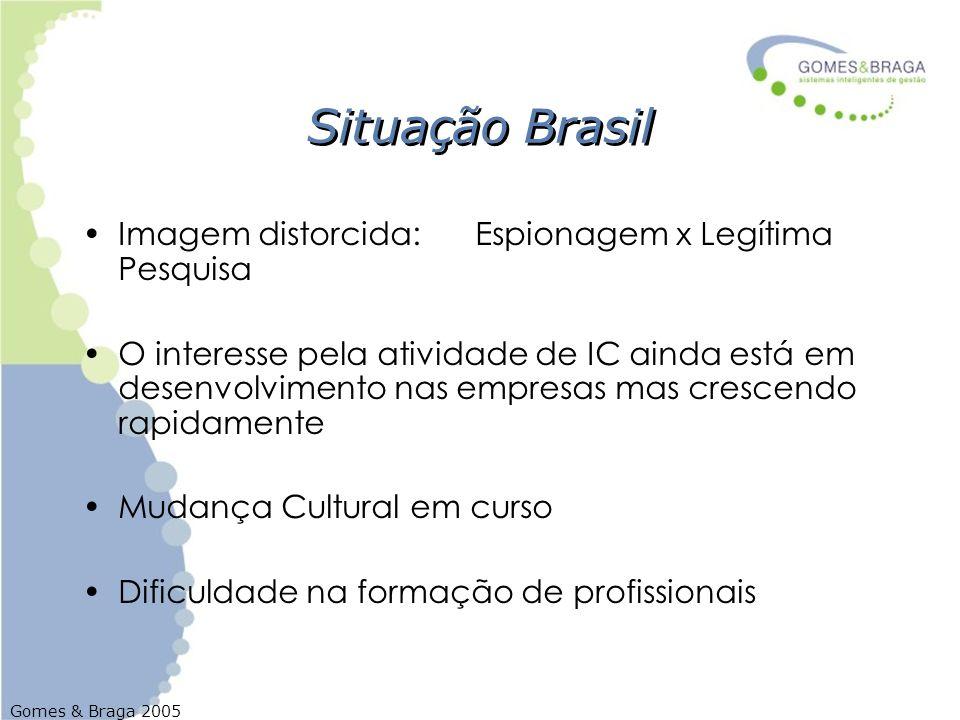 Gomes & Braga 2005 Situação Brasil Imagem distorcida: Espionagem x Legítima Pesquisa O interesse pela atividade de IC ainda está em desenvolvimento na