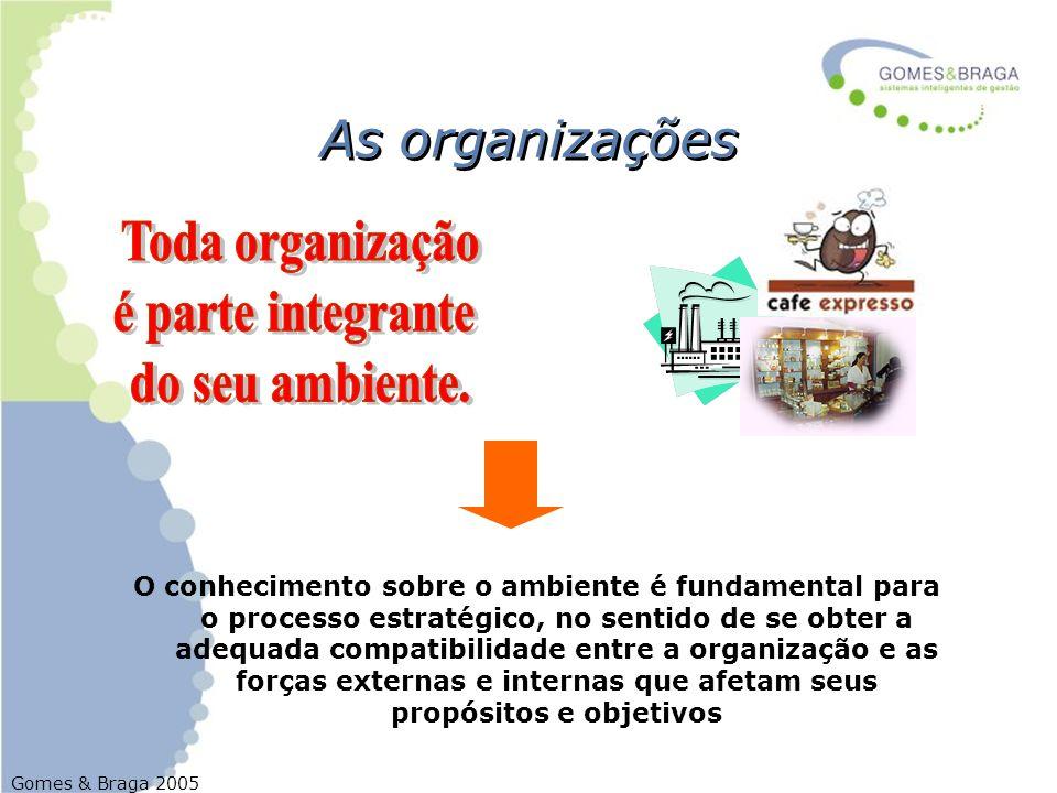 Gomes & Braga 2005 As organizações O conhecimento sobre o ambiente é fundamental para o processo estratégico, no sentido de se obter a adequada compat