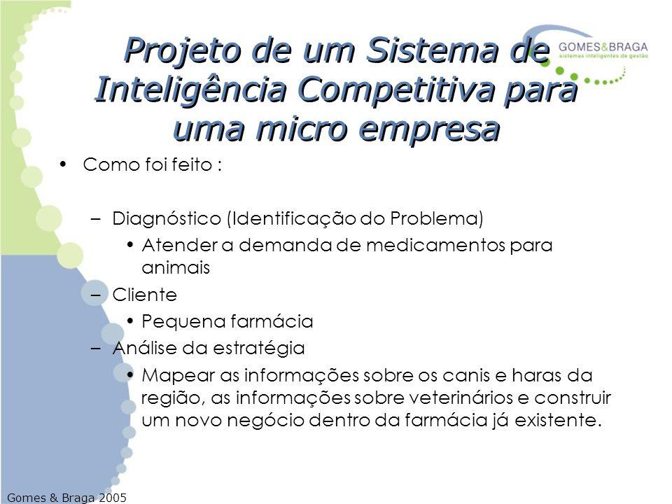 Gomes & Braga 2005 Projeto de um Sistema de Inteligência Competitiva para uma micro empresa Como foi feito : –Diagnóstico (Identificação do Problema)