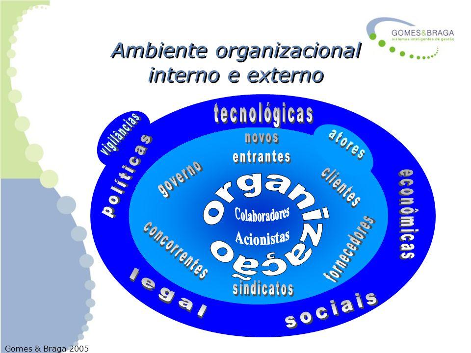Gomes & Braga 2005 Ambiente organizacional interno e externo