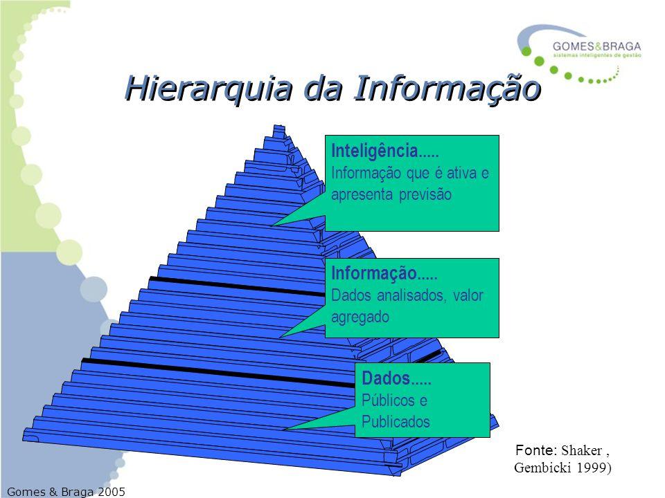 Gomes & Braga 2005 Hierarquia da Informação Dados..... Públicos e Publicados Inteligência..... Informação que é ativa e apresenta previsão Informação.