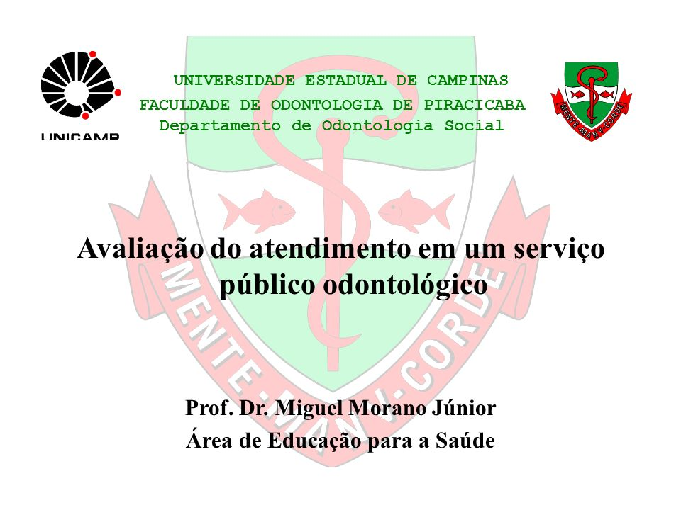 UNIVERSIDADE ESTADUAL DE CAMPINAS FACULDADE DE ODONTOLOGIA DE PIRACICABA Departamento de Odontologia Social Avaliação do atendimento em um serviço púb