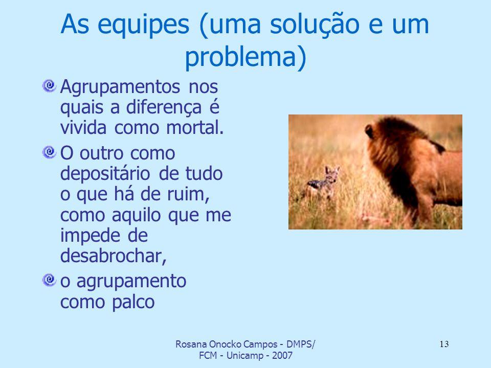 Rosana Onocko Campos - DMPS/ FCM - Unicamp - 2007 13 As equipes (uma solução e um problema) Agrupamentos nos quais a diferença é vivida como mortal. O
