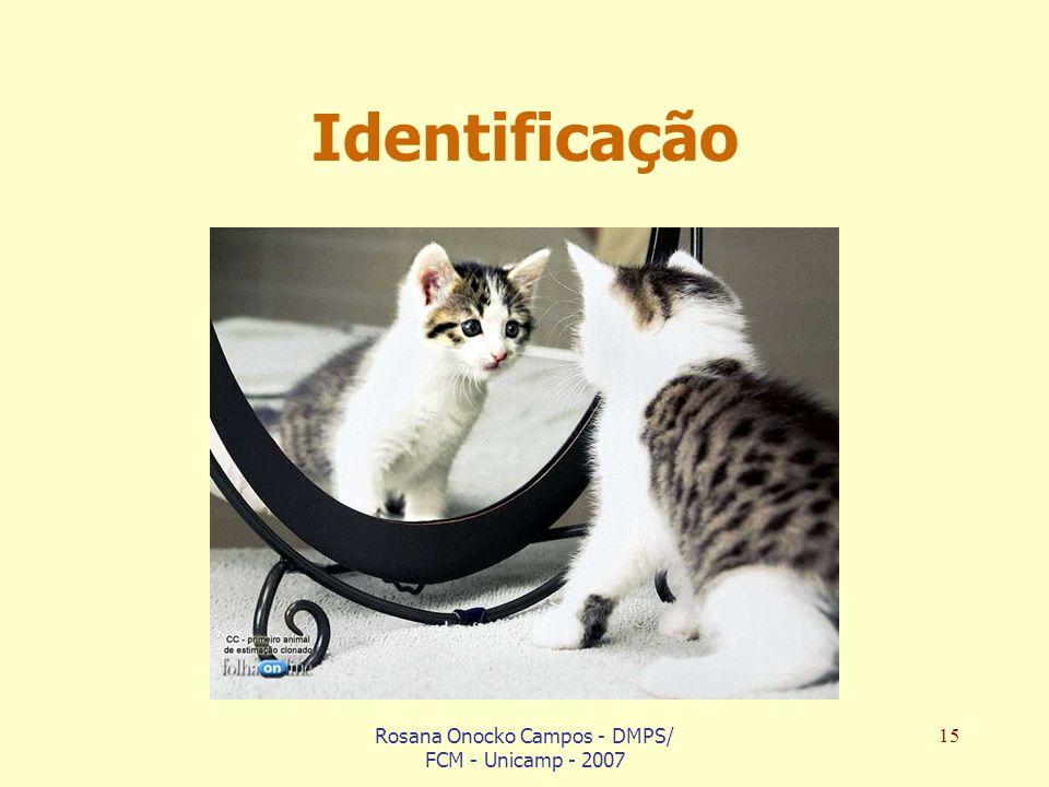 Rosana Onocko Campos - DMPS/ FCM - Unicamp - 2007 15 Identificação