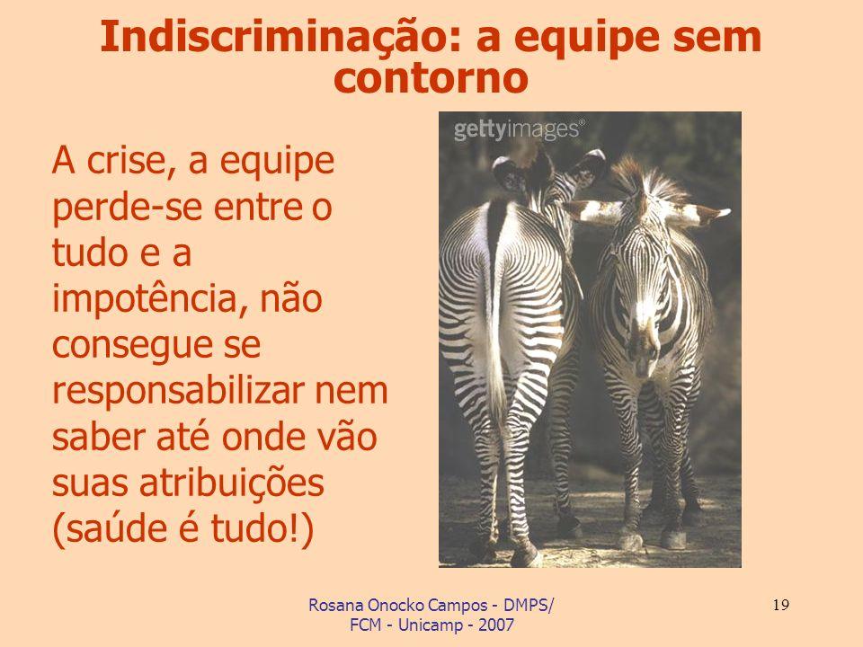 Rosana Onocko Campos - DMPS/ FCM - Unicamp - 2007 19 A crise, a equipe perde-se entre o tudo e a impotência, não consegue se responsabilizar nem saber