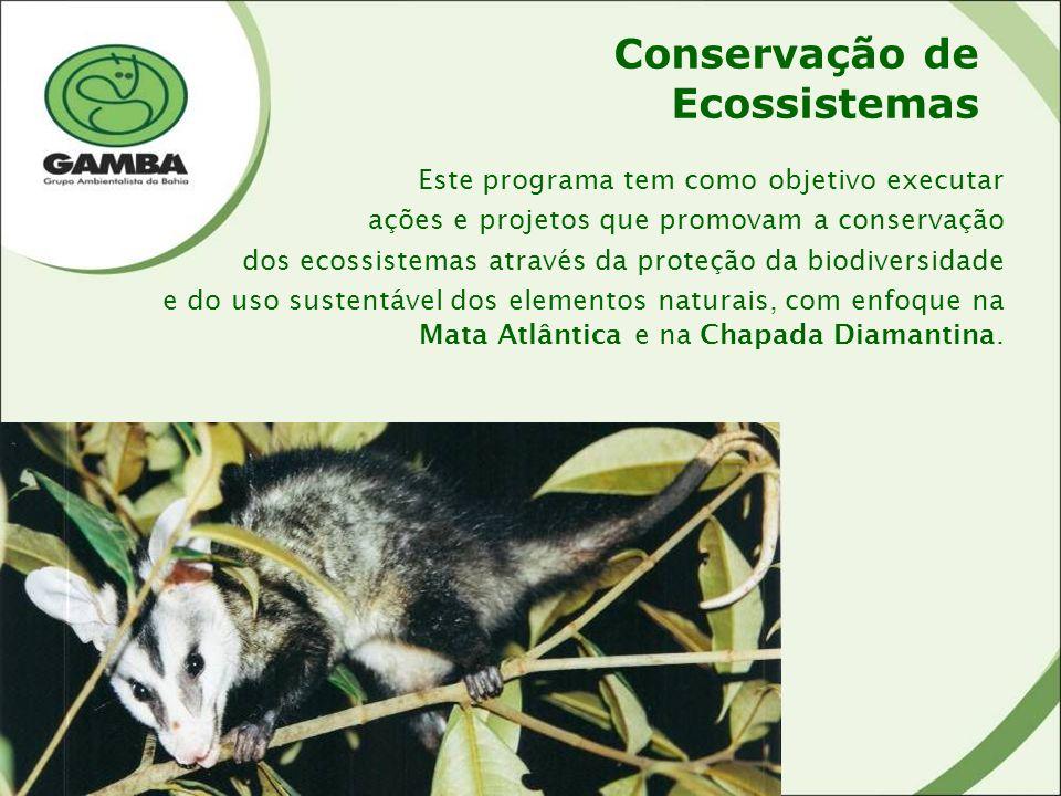 Conservação de Ecossistemas Este programa tem como objetivo executar ações e projetos que promovam a conservação dos ecossistemas através da proteção da biodiversidade e do uso sustentável dos elementos naturais, com enfoque na Mata Atlântica e na Chapada Diamantina.
