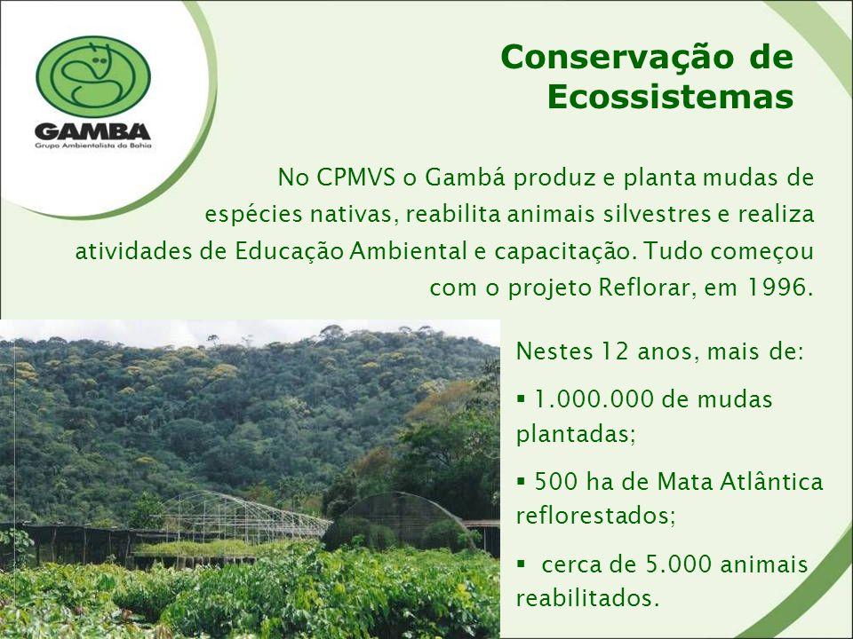Conservação de Ecossistemas No CPMVS o Gambá produz e planta mudas de espécies nativas, reabilita animais silvestres e realiza atividades de Educação Ambiental e capacitação.