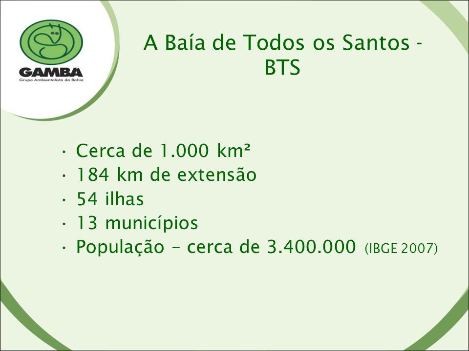 A Baía de Todos os Santos - BTS Cerca de 1.000 km² 184 km de extensão 54 ilhas 13 municípios População – cerca de 3.400.000 (IBGE 2007)