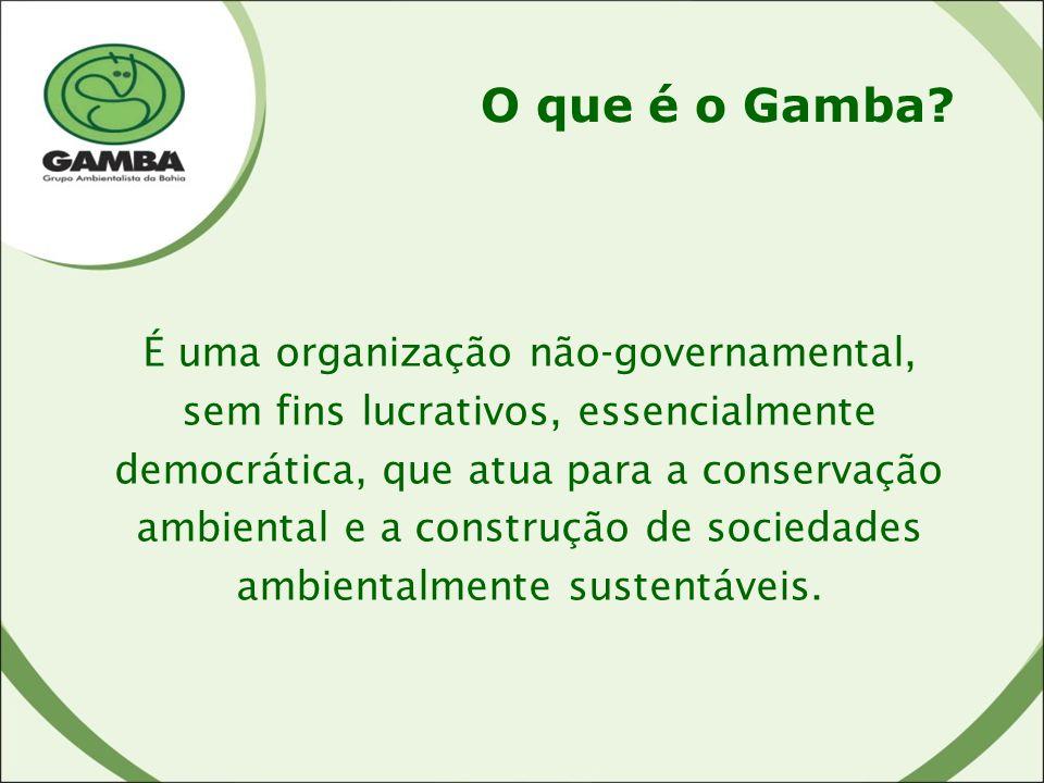 É uma organização não-governamental, sem fins lucrativos, essencialmente democrática, que atua para a conservação ambiental e a construção de sociedades ambientalmente sustentáveis.