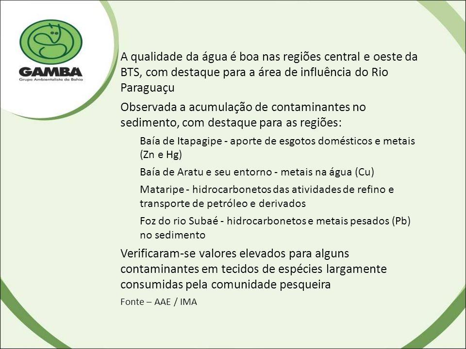 A qualidade da água é boa nas regiões central e oeste da BTS, com destaque para a área de influência do Rio Paraguaçu Observada a acumulação de contaminantes no sedimento, com destaque para as regiões: Baía de Itapagipe - aporte de esgotos domésticos e metais (Zn e Hg) Baía de Aratu e seu entorno - metais na água (Cu) Mataripe - hidrocarbonetos das atividades de refino e transporte de petróleo e derivados Foz do rio Subaé - hidrocarbonetos e metais pesados (Pb) no sedimento Verificaram-se valores elevados para alguns contaminantes em tecidos de espécies largamente consumidas pela comunidade pesqueira Fonte – AAE / IMA