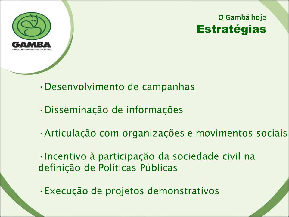 O Gambá hoje Estratégias Desenvolvimento de campanhas Disseminação de informações Articulação com organizações e movimentos sociais Incentivo à participação da sociedade civil na definição de Políticas Públicas Execução de projetos demonstrativos
