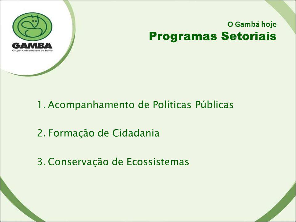 O Gambá hoje Programas Setoriais 1.Acompanhamento de Políticas Públicas 2.Formação de Cidadania 3.Conservação de Ecossistemas
