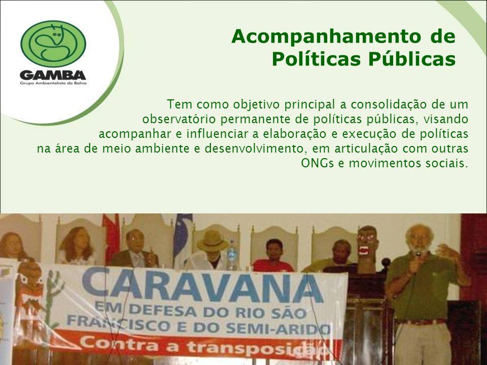 Cartaz - 1996 Acompanhamento de Políticas Públicas Tem como objetivo principal a consolidação de um observatório permanente de políticas públicas, visando acompanhar e influenciar a elaboração e execução de políticas na área de meio ambiente e desenvolvimento, em articulação com outras ONGs e movimentos sociais.