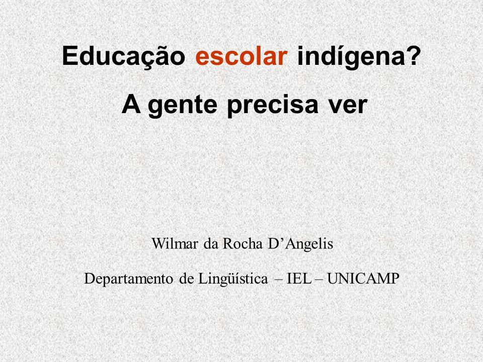 Educação escolar indígena? A gente precisa ver Wilmar da Rocha DAngelis Departamento de Lingüística – IEL – UNICAMP