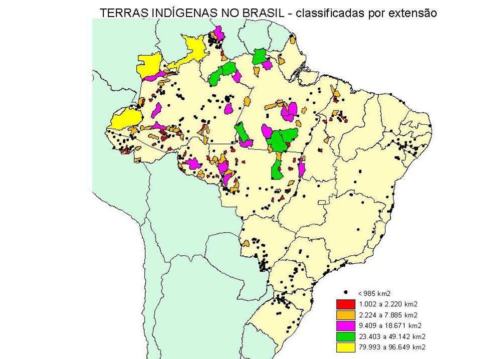 Censos demográficos nacionais a partir do ano de 1872; Povos indígenas e indivíduos descendentes (mas já não mais residindo em aldeias) contabilizados como caboclos ou pardos até o censo de 1991; Levantamentos especiais realizados pelo SPI (Darcy Ribeiro) e FUNAI, além daqueles realizados por Ongs (CIMI, ISA e outros parciais); Em 1991 (após a Constituição de 1988) introduz-se a categoria indígena na variável cor da pele do questionário da amostra; As categorias dessa variável são: branco, preto, amarelo, pardo e indígena; Luta política por melhor definição das categorias étnico-raciais nos censos e outras pesquisas demográficas oficiais brasileiras.