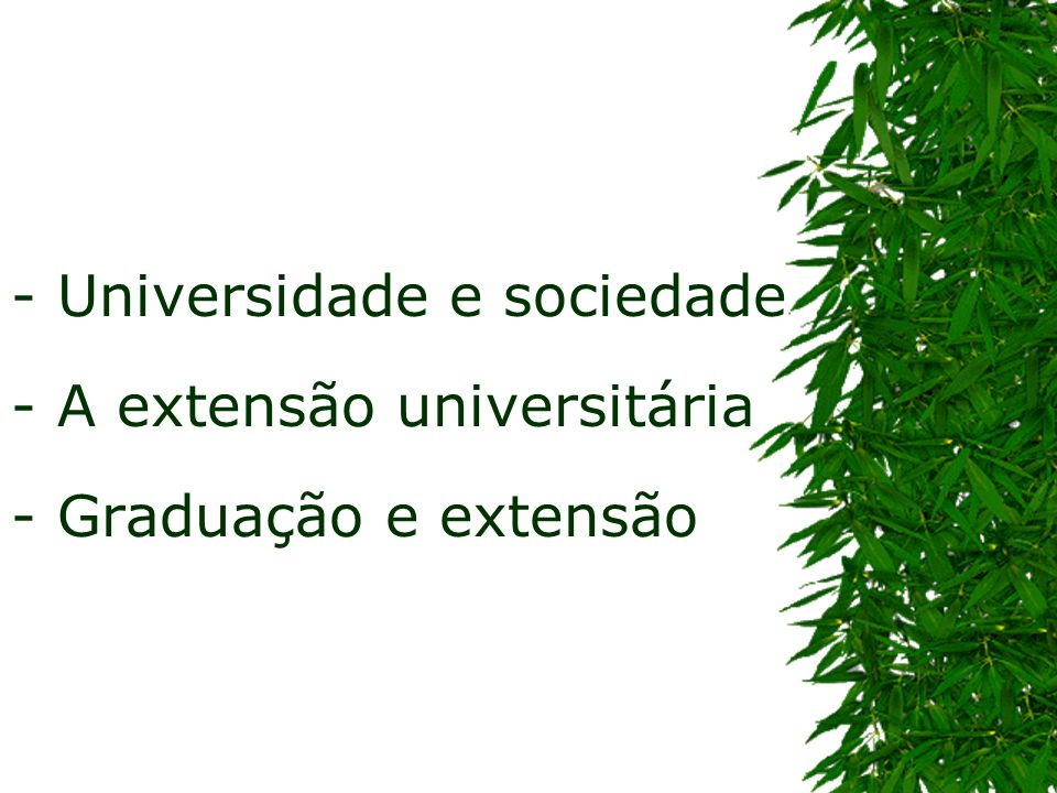Graduação e Extensão Universitária Algumas considerações....