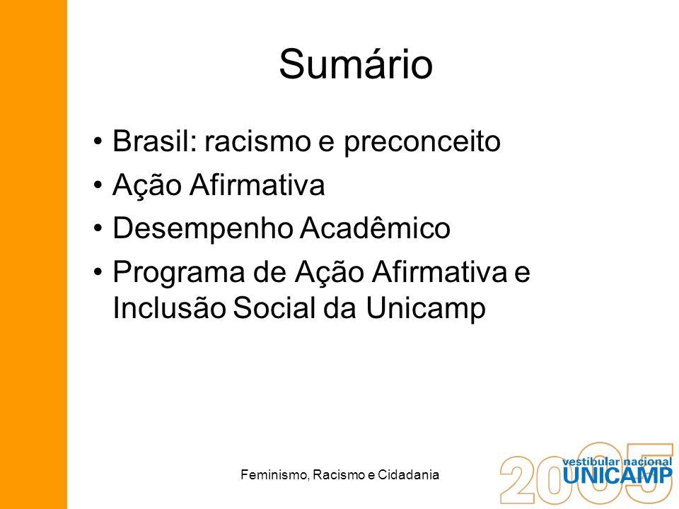 Feminismo, Racismo e Cidadania Sumário Brasil: racismo e preconceito Ação Afirmativa Desempenho Acadêmico Programa de Ação Afirmativa e Inclusão Socia