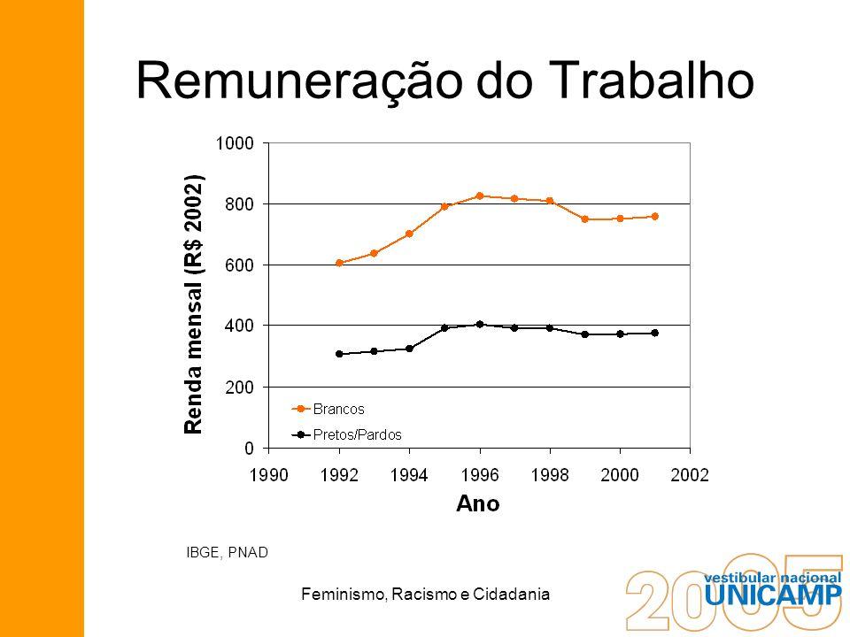 Feminismo, Racismo e Cidadania Remuneração do Trabalho IBGE, PNAD