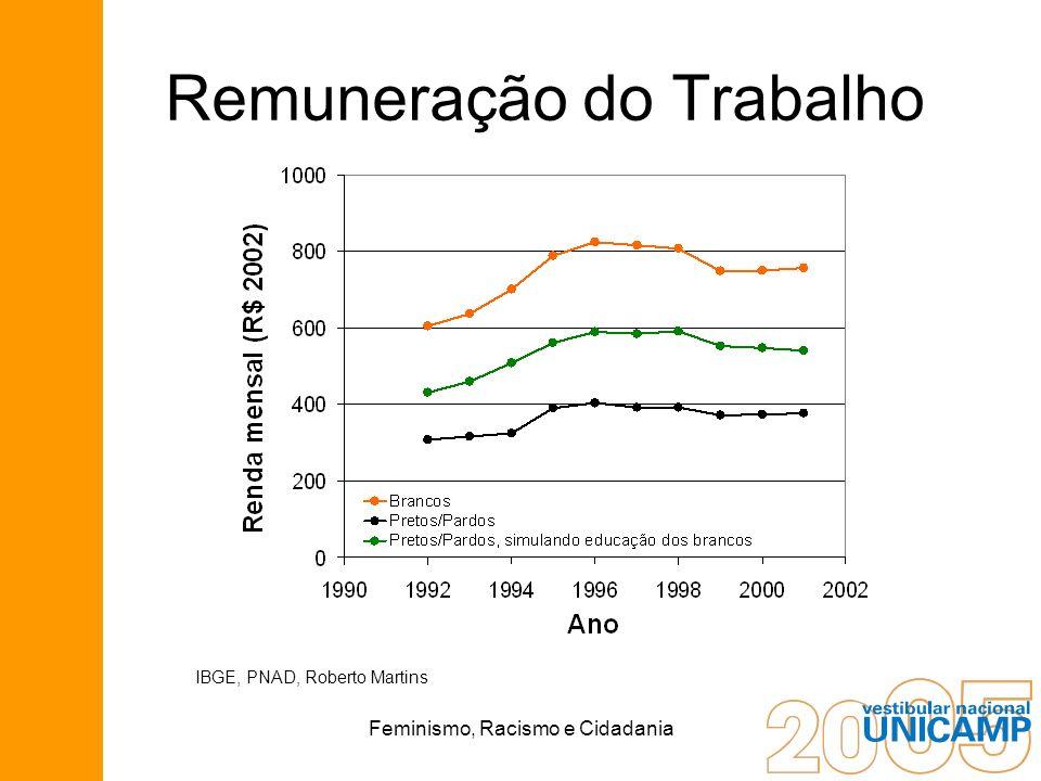 Feminismo, Racismo e Cidadania Remuneração do Trabalho IBGE, PNAD, Roberto Martins
