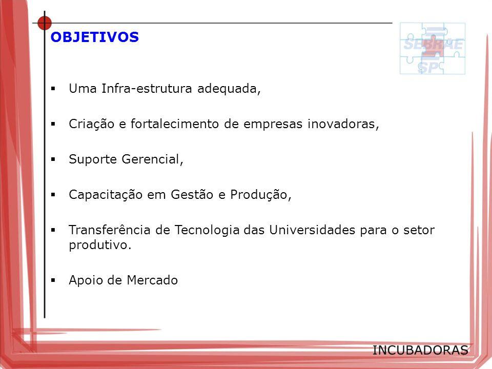 OBJETIVOS Uma Infra-estrutura adequada, Criação e fortalecimento de empresas inovadoras, Suporte Gerencial, Capacitação em Gestão e Produção, Transfer