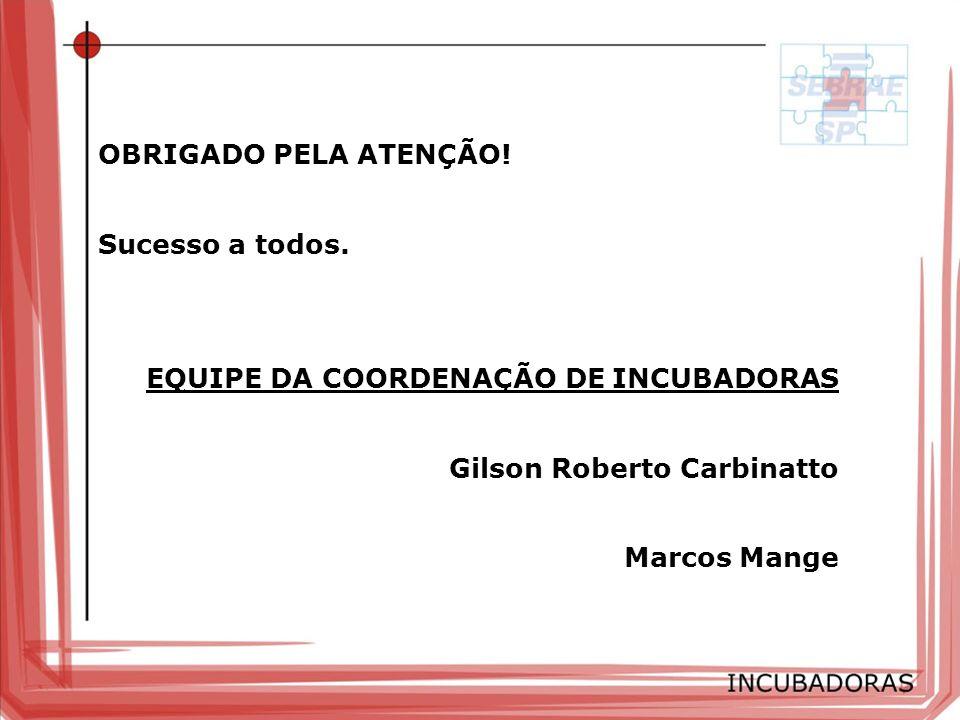 OBRIGADO PELA ATENÇÃO! Sucesso a todos. EQUIPE DA COORDENAÇÃO DE INCUBADORAS Gilson Roberto Carbinatto Marcos Mange