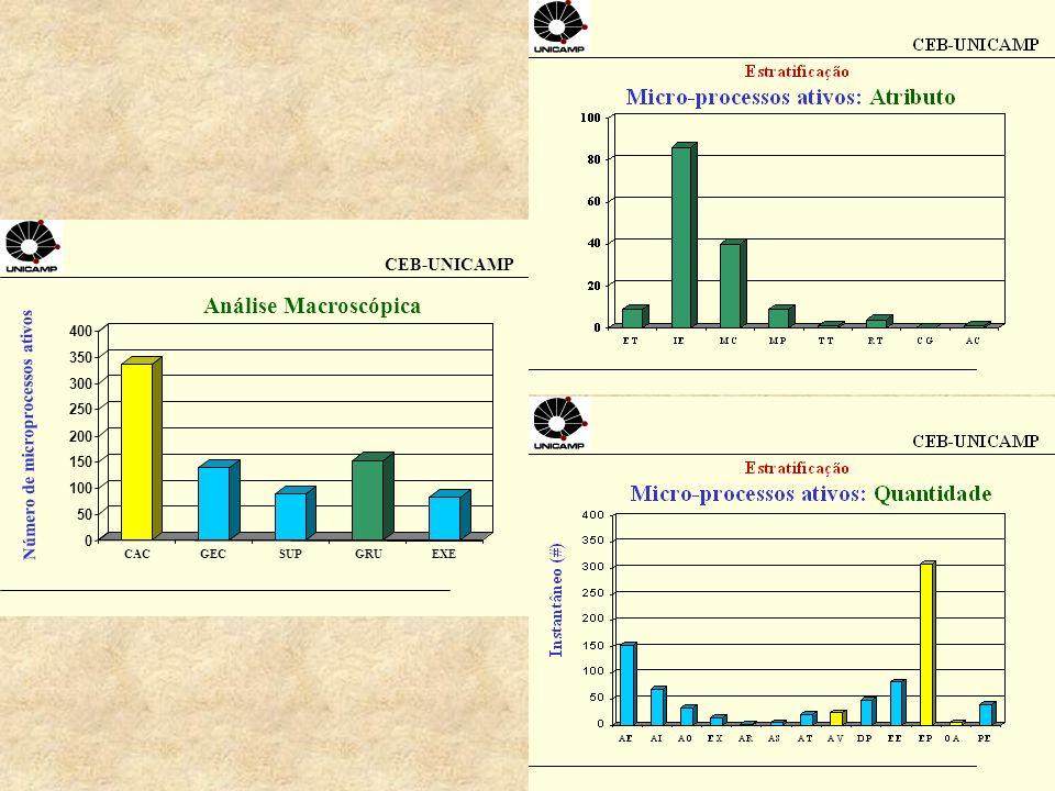 CEB-UNICAMP Número de microprocessos ativos Análise Macroscópica 0 50 100 150 200 250 300 350 400 CACGECSUPGRUEXE